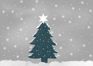 Allen frohe Weihnachten und ein gutes Neues Jahr (Bild: 1/24)