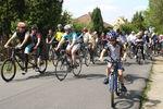 Anradeln 2014 - Start sportliche Strecken (Bild: 9/23)